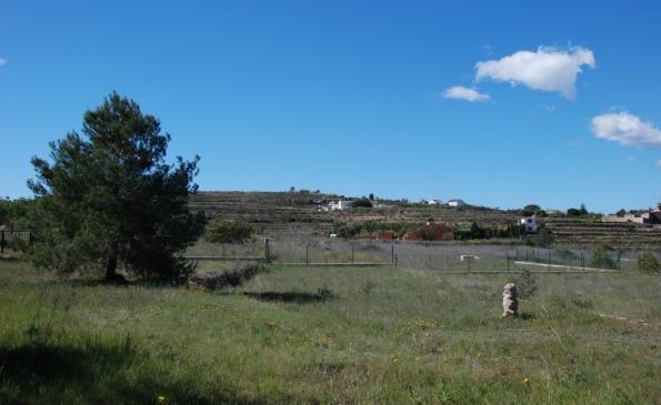 Grondstuk 15.000m2 Benimarco Teulada, regio Moraira – Benissa